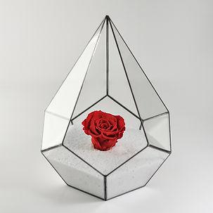 geometrik teraryum solmayan gül cam fanus