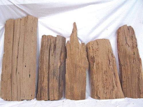 Cypress Driftwood