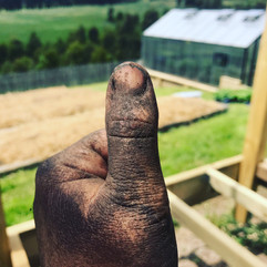 Brown thumb!