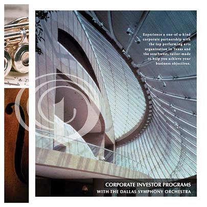 DSO+Corporate+Giving+Brochure.jpg