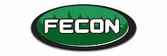 FEcon.jpg