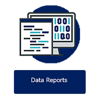 Data Reports.png