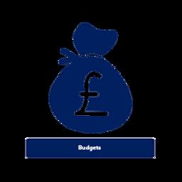 Budget Management.png