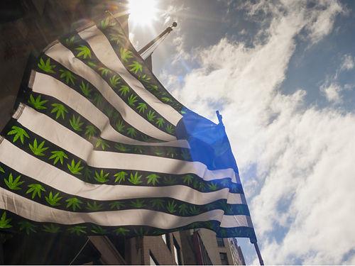 MarijuanaFlag856.jpg