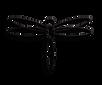 vážka elizu.png