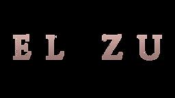 logo nazov elizu.png
