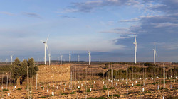 Windfarm Coll del Moro, Spain