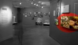 Enric Majoral Exhibition