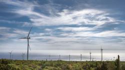 Windfarm Los Cururos, Chile