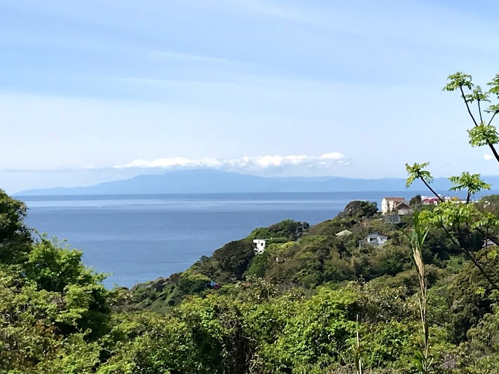 Sagami Bay from Hayama Hill