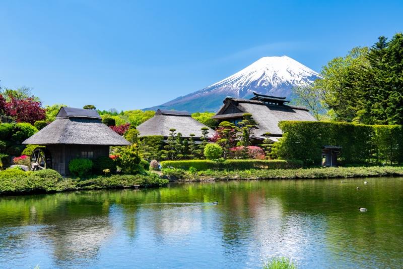 Mt. Fuji Oshino Village