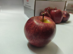SMALL_APPLES_FAR_FROM_BOXED