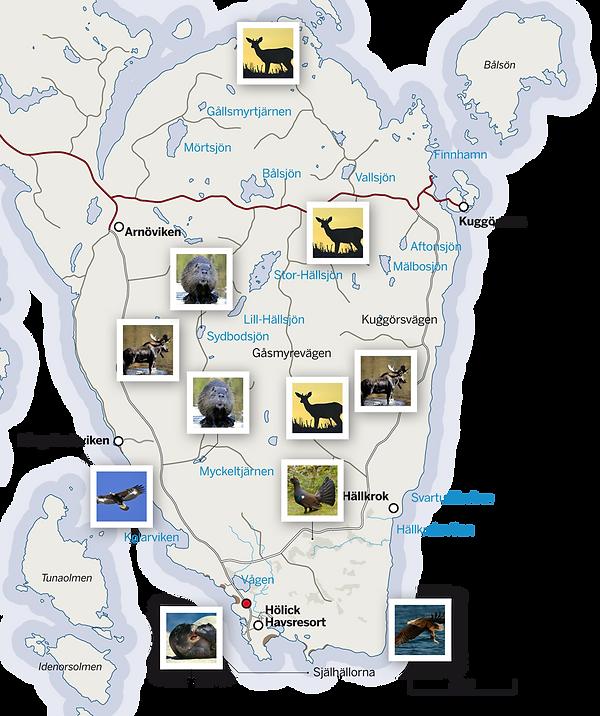 grottsystem karta