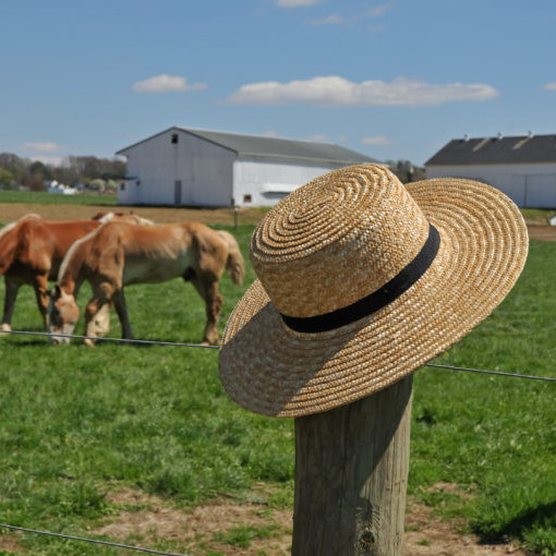 The Ark & Ohio Amish