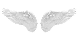 rebecca ann angel wings.jpg