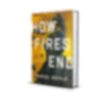 Hardcover%203D_edited.png
