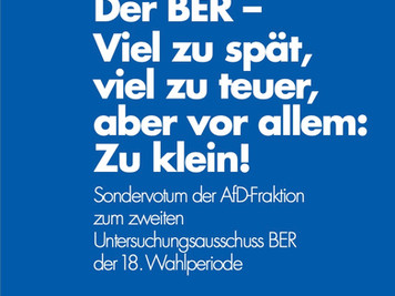 Sondervotum AfD