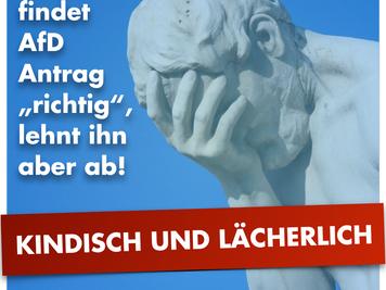 CDU verhält sich kindisch und lächerlich