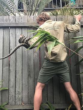 Python on fence
