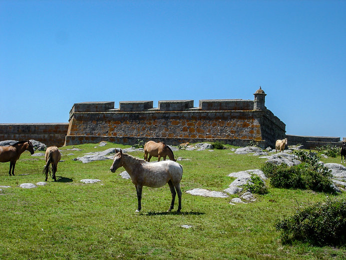 Santa Teresa Fort in the nearby national