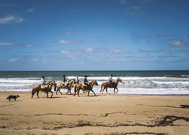 Copy of Uruguay ocean views copy.jpg