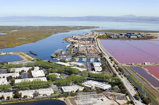 OP-ED: Salt ponds not zoned for housing