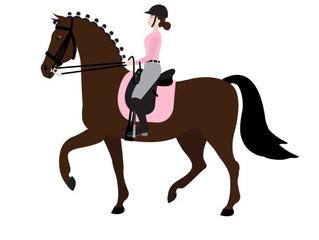 Dressage Training, Monday 23rd August, Castlehill Equestrian Centre