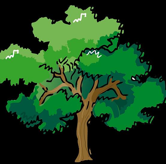 clipart-tree-MKTjKnaiq.png