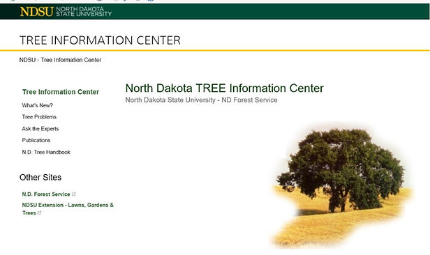 tree info center.jpg