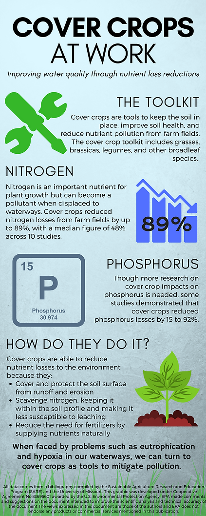 Nitrogen_and_phosphorus.png