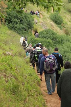 טיולי הליכה בטבע לקבוצות
