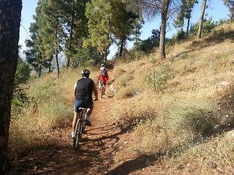 סינגל יער ביריה - טיול אופניים בצפון