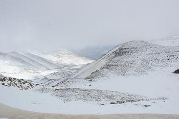 ימי כיף לגמלאים בצפון - הטריפ הצפוני