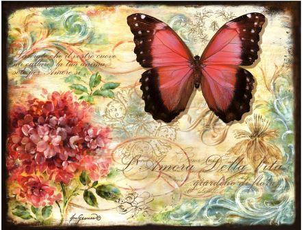 LP300 Le papillon