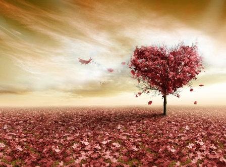 LP727 L'amour d'automne