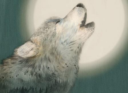 LP Le loup