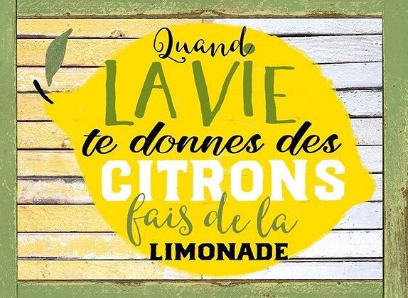 LP371 Les citrons