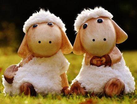 LP713  Les mouton