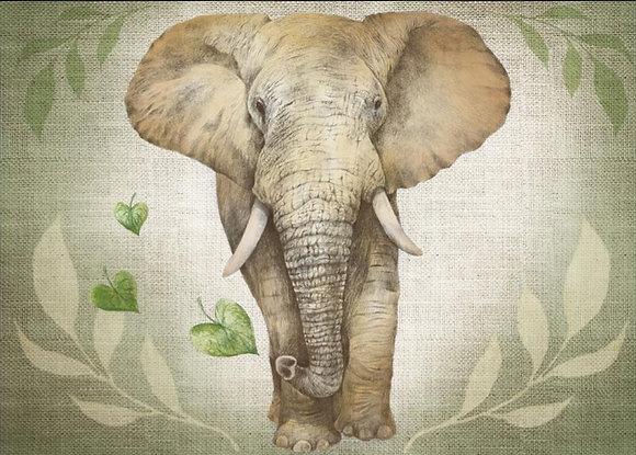 LP377 L'éléphant