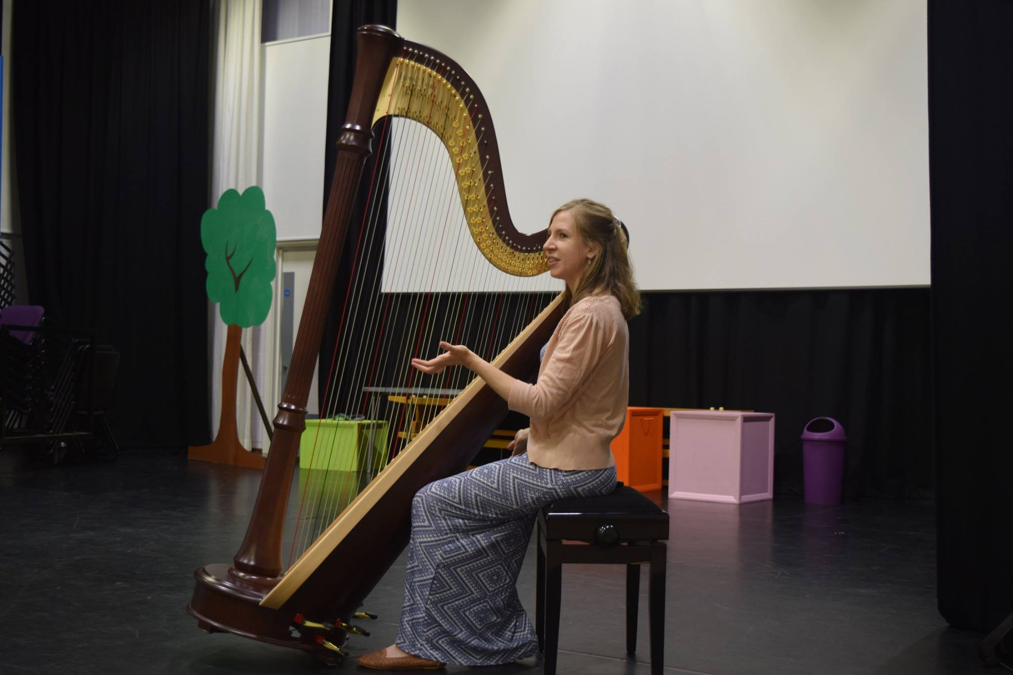 School Harp Demonstration