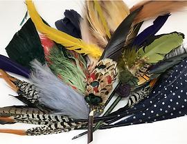 Lot de plumes, costumes de Paris .png