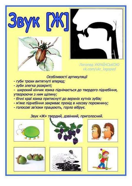 FB_IMG_1518174172718.jpg