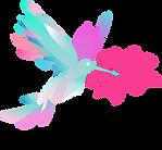 colibri8.png