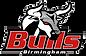 Birmingham Bulls Logo.png