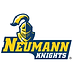 neumann hockey logo.png