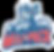 Hartford Wolfpack Logo.png