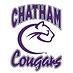 Chatham university hockey logo.png