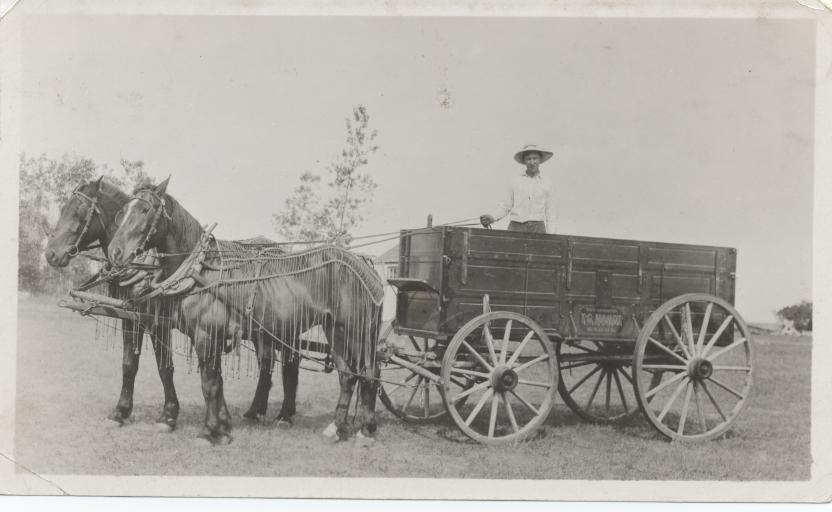 Valdi, Snip,Daisy 1918