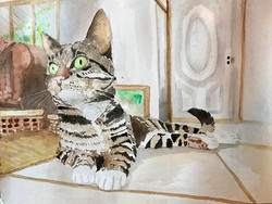 Watercolor Kitty