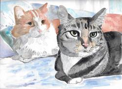 Watercolor Cat Duo
